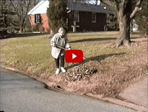 Raking Leaves to the curb
